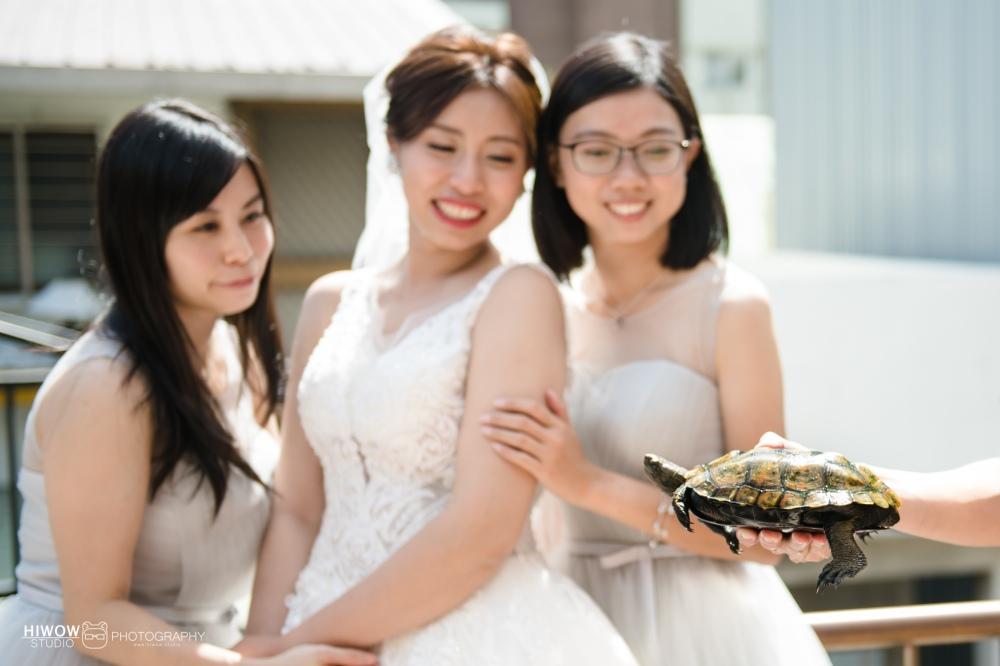 海蛙攝影:austin:hiwal.studio:婚攝:自助婚紗:婚禮紀錄:三重:彭園104